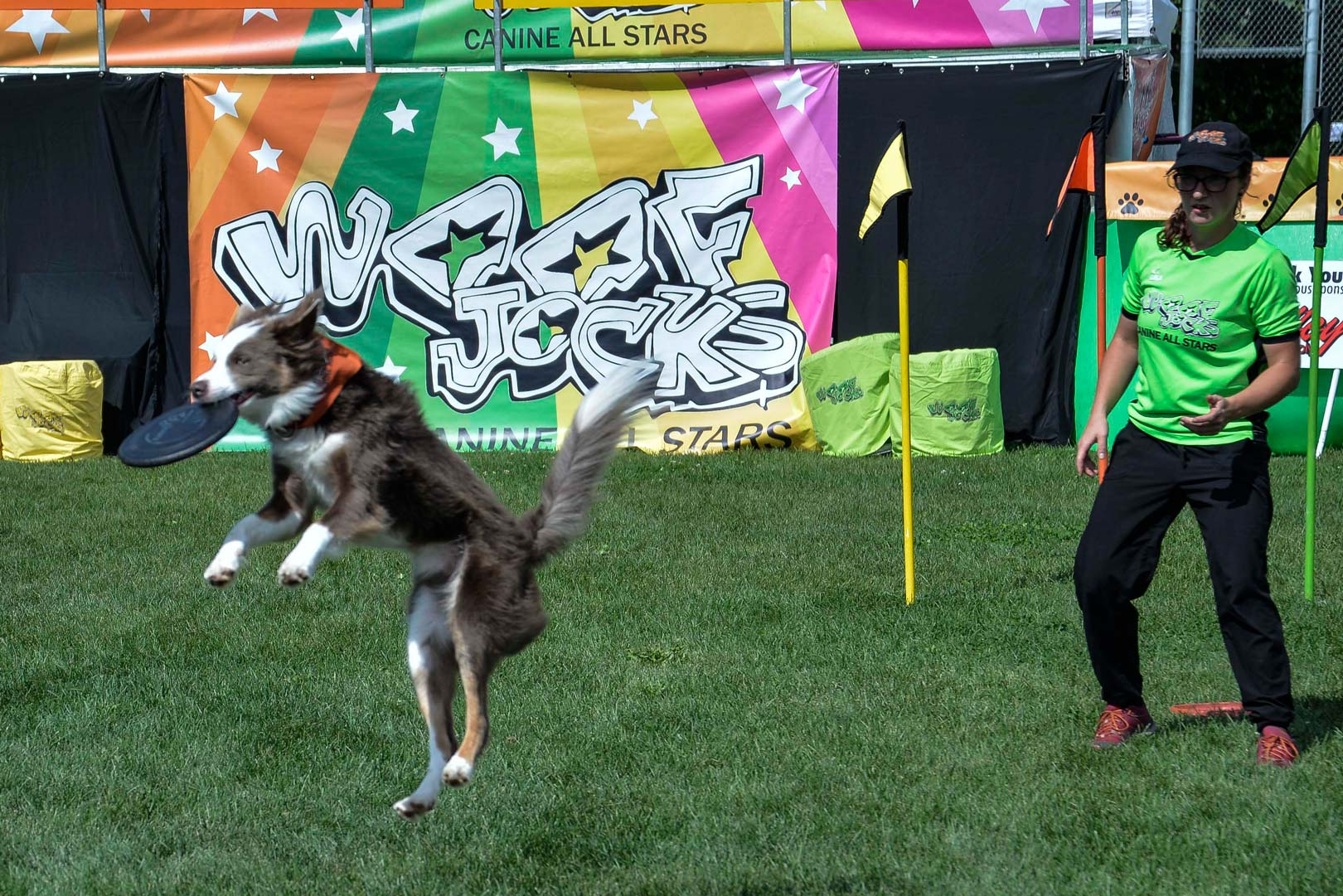 Woofjocks Canine All-Stars at Beeton Fair